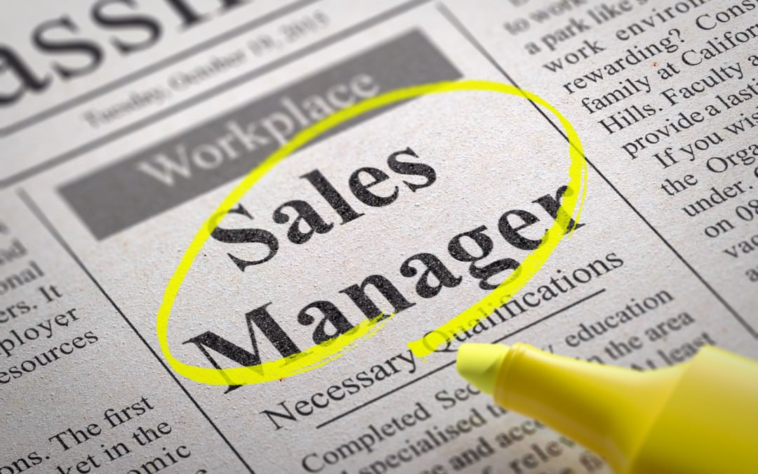 To Hire or Not hire a Sales Manager? That is the Question.